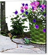 Chipmunk And Flowers Acrylic Print