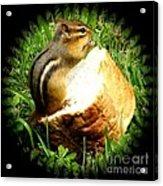 Chipmunk Saying Grace Acrylic Print