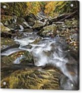 Chippewa Creek In Fall Acrylic Print