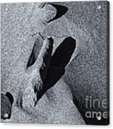 Chiseled By The Wind Acrylic Print