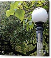 Chittenden Garden Acrylic Print