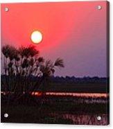 Chobe River Sunset Acrylic Print