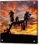 Cholla In Flame Acrylic Print