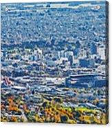 Christchurch City Acrylic Print