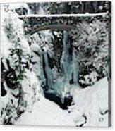 Christine Falls, Mount Rainier National Acrylic Print