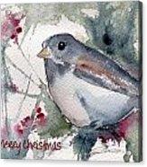 Christmas Birds 01 Acrylic Print