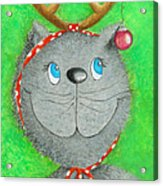Christmas Cat Acrylic Print by Sonja Mengkowski