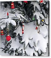 Christmas Decorations On Snowy Tree Acrylic Print