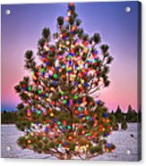 Christmas Dream Acrylic Print