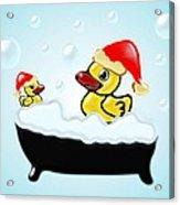 Christmas Ducks Acrylic Print