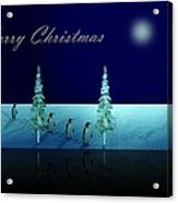 Christmas Eve Walk Of The Penguins  Acrylic Print