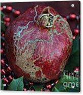 Christmas Fruit Acrylic Print