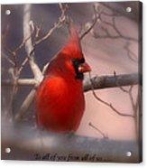 Christmas Greetings - Cardinal Acrylic Print