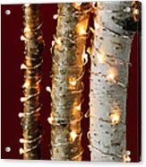 Christmas Lights On Birch Branches Acrylic Print by Elena Elisseeva