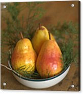 Christmas Pears In A Bowl Acrylic Print
