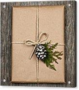 Christmas Present  Acrylic Print by Elena Elisseeva