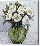 Christmas Roses Acrylic Print by Gillian Lawson