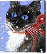 Christmas Siamese Acrylic Print