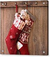 Christmas Stockings Acrylic Print