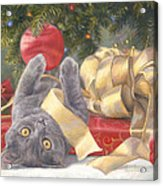 Christmas Surprise Acrylic Print