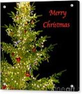 Christmas Tree Lighting Acrylic Print