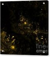 Christmas Tree Series 2 Acrylic Print