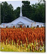 Church In The Fields Acrylic Print