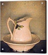 Cicada On Pitcher Acrylic Print