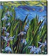 Cilia Flowers Acrylic Print