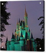 Cinderella Castle At Night  Acrylic Print