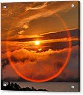 Circle Round The Sun Acrylic Print by Steven Ainsworth