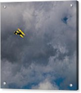 Circling For 2nd Flyover Acrylic Print