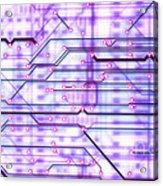 Circuit Trace Acrylic Print