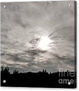 Cirrus Sunset Acrylic Print