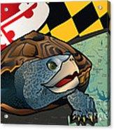 Citizen Terrapin Maryland's Turtle Acrylic Print