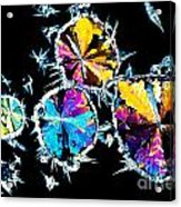 Citric Acid Crystals In Polarized Light Acrylic Print
