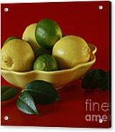 Citrus Passion Acrylic Print