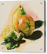 Citrus Under The Sun Light Acrylic Print by Alessandra Andrisani
