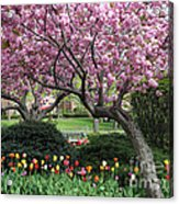 City Blossoms Acrylic Print