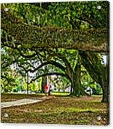 City Park Stroll 2 Acrylic Print