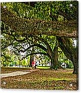 City Park Stroll Acrylic Print