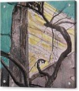 City Springtime Acrylic Print