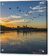 City Wakes Acrylic Print