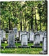 Civitl War Warrior Graves Acrylic Print by Linda Phelps