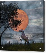 Claiming The Moon Acrylic Print by Betsy Knapp