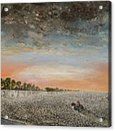 Clarksdale Mississippi Highway 61 Acrylic Print