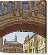 Classic Oxford Textured Acrylic Print