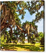 Classic Southern Beauty 2 Acrylic Print