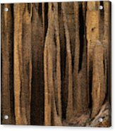 Clay Organ Pipes Formation In Front Acrylic Print