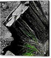 Clean Cut Sc Acrylic Print